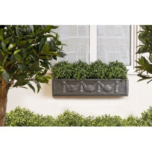 Osterley Fiberglass Window Box Planter By Astoria Grand