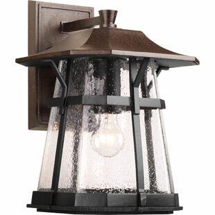 Triplehorn Outdoor Espresso Wall Lantern by Alcott Hill