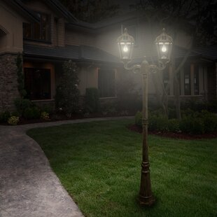 Royal Solar Powered 22-Light LED 89