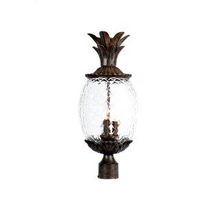 Kyra 3 Light Outdoor Lantern Head by Beachcrest Home