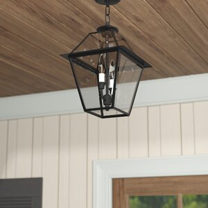 Orchard Lane 2-Light Outdoor Hanging Lantern
