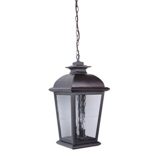 Staggs 3-Light Outdoor Hanging Lantern