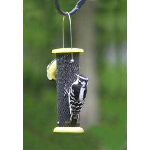 Birds Choice Low Cost Nyjer/Thistle Feeder