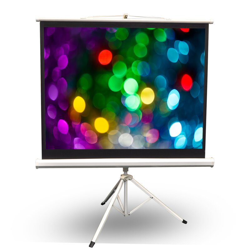 Pyle White Portable Projection Screen Reviews Wayfair