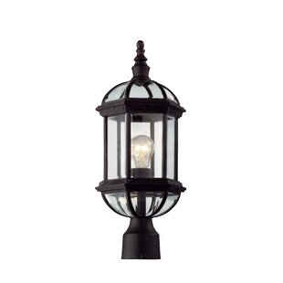 Laurel Foundry Modern Farmhouse Powell 1-Light Lantern Head