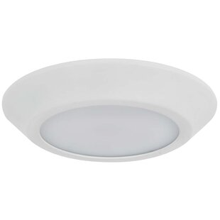 Dengler LED Outdoor Flush Mount by Winston Porter Amazing