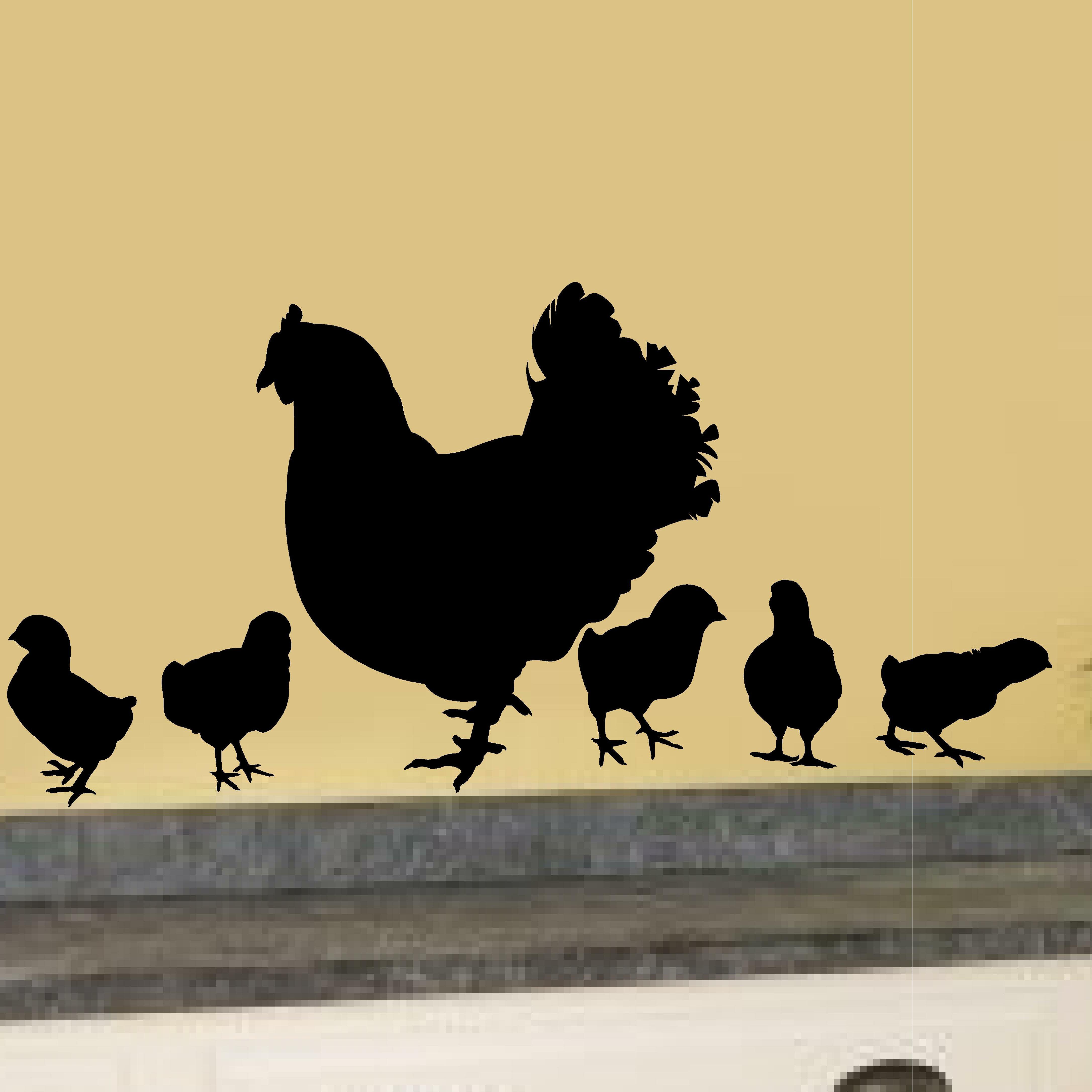 Enchantingly Elegant 5 Piece Chicken Hens Baby Chick Vinyl Garden ...