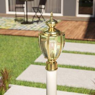 World Menagerie Mcdaniel 1-Light Lantern Head