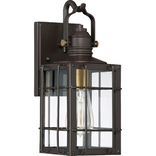 Victorina Transitional 1-Light Outdoor Wall Lantern