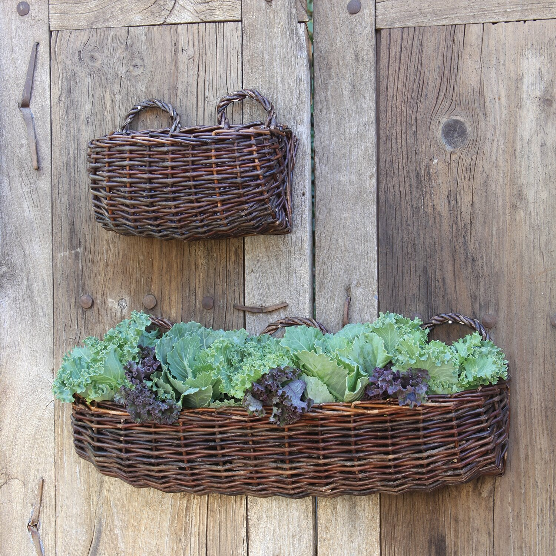 August Grove Karley Willow Rectangle Wall Basket Wayfair