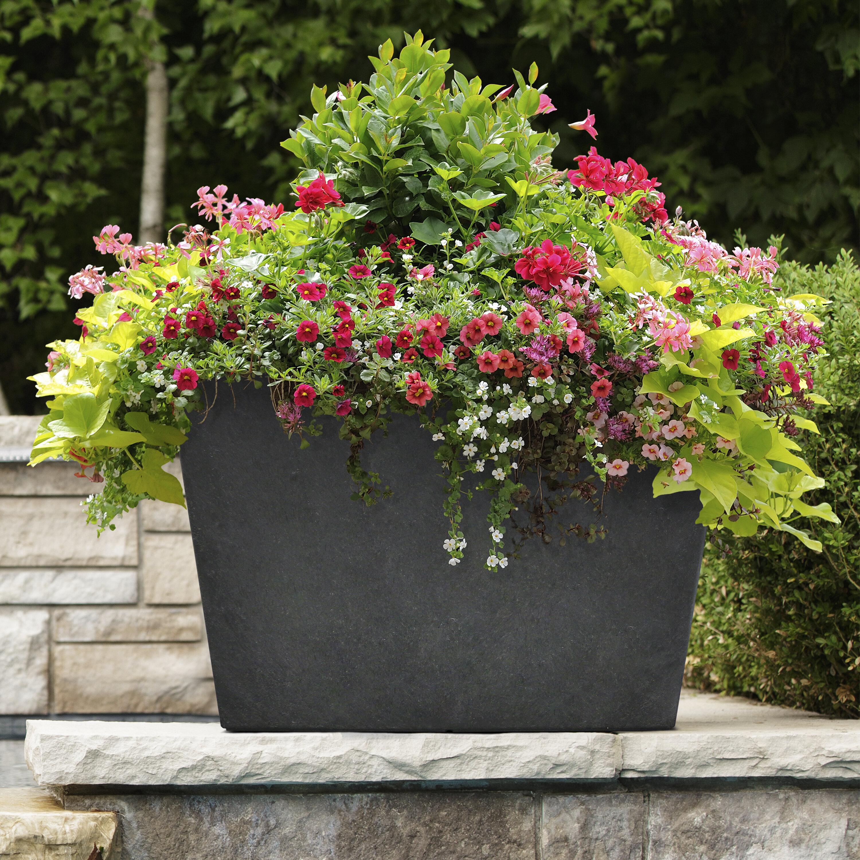 Latitude Run Anna Lee Self Watering Recycled Rubber Pot Planter Wayfair
