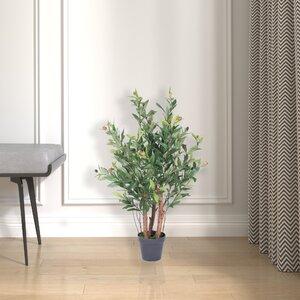 Best Faux Olive Tree