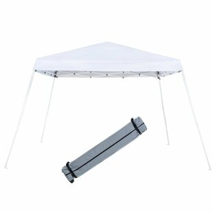 Abba Patio Slant Leg 12 Ft. W x 12 Ft. D Steel Pop-Up Canopy