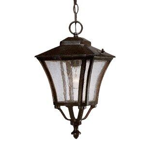 Bloomsbury Market Herald 1-Light Outdoor Hanging Lantern