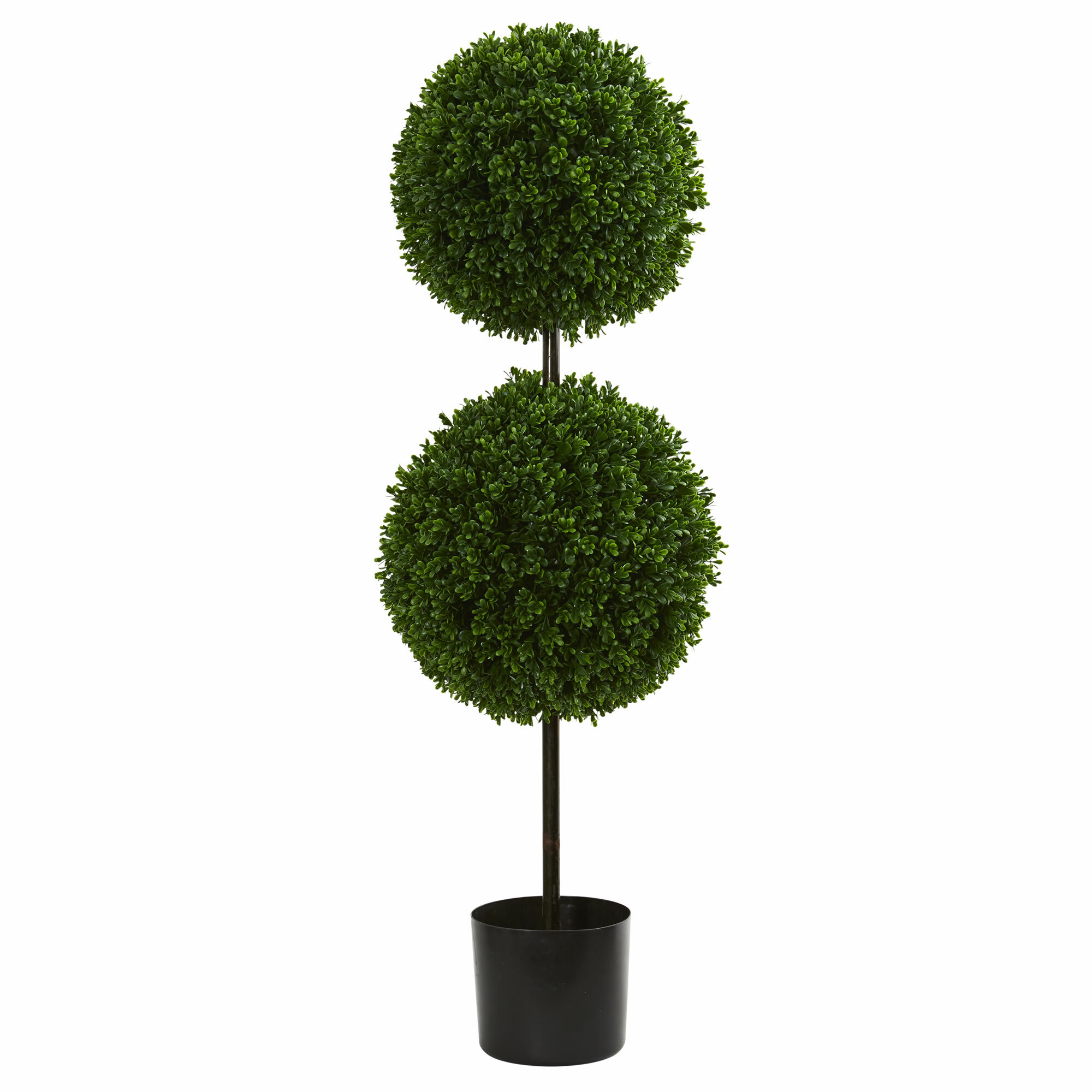Double Ball Boxwood Topiary In Planter Reviews Joss Main