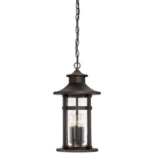 Mariam 3-Light Outdoor Hanging Lantern by Longshore Tides