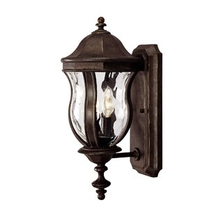 Darby Home Co Coutu 2-Light Outdoor Sconce