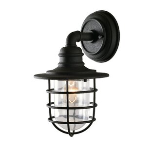 Dardel 1-Light Outdoor Wall Lantern