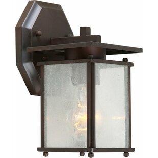 Savings Mcquaig 1-Light Outdoor Wall Lantern By Ebern Designs