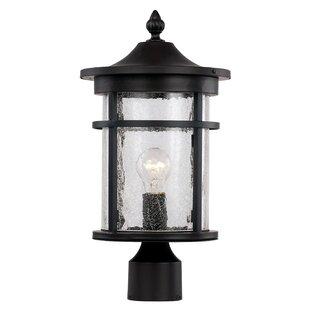 Ilene 1-Light Lantern Head By Latitude Run Outdoor Lighting