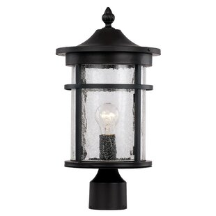 Bargain Ilene 1-Light Lantern Head By Latitude Run