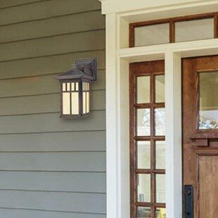 Omarion 1-Light Outdoor Wall Lantern