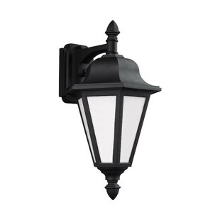 Palmdale 100W 1-Light Outdoor Wall Lantern by Darby Home Co