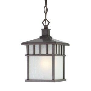 Teminot 1-Light Outdoor Hanging Lantern