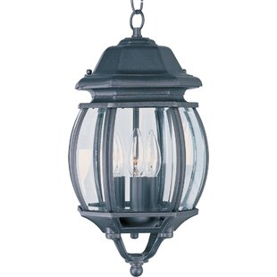 Didcot 3 Light Outdoor Hanging Lantern