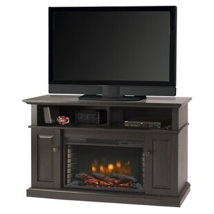 Delaney 48 inch  TV Stand with Fireplace