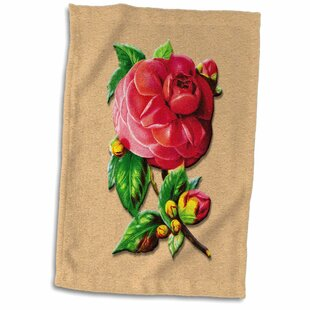 Symple Stuff Kitchen Towels You Ll Love In 2021 Wayfair