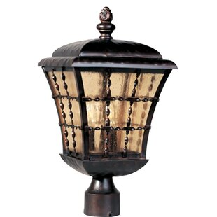 Oruada Outdoor 3-Light Lantern Head by Astoria Grand
