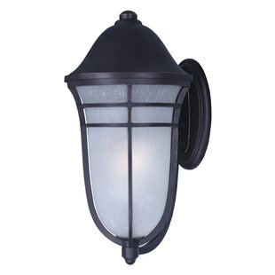 Darby Home Co Caleb 1-Light Outdoor Sconce
