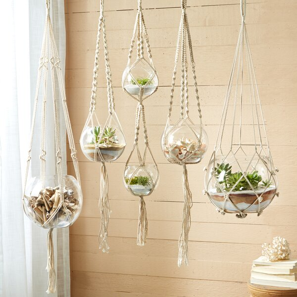 Bungalow Rose Stephenson 5-Piece Glass Hanging Planter Set & Reviews    Wayfair