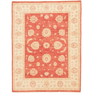Fries Hand Knotted Wool Red/Beige Rug by Rosalind Wheeler