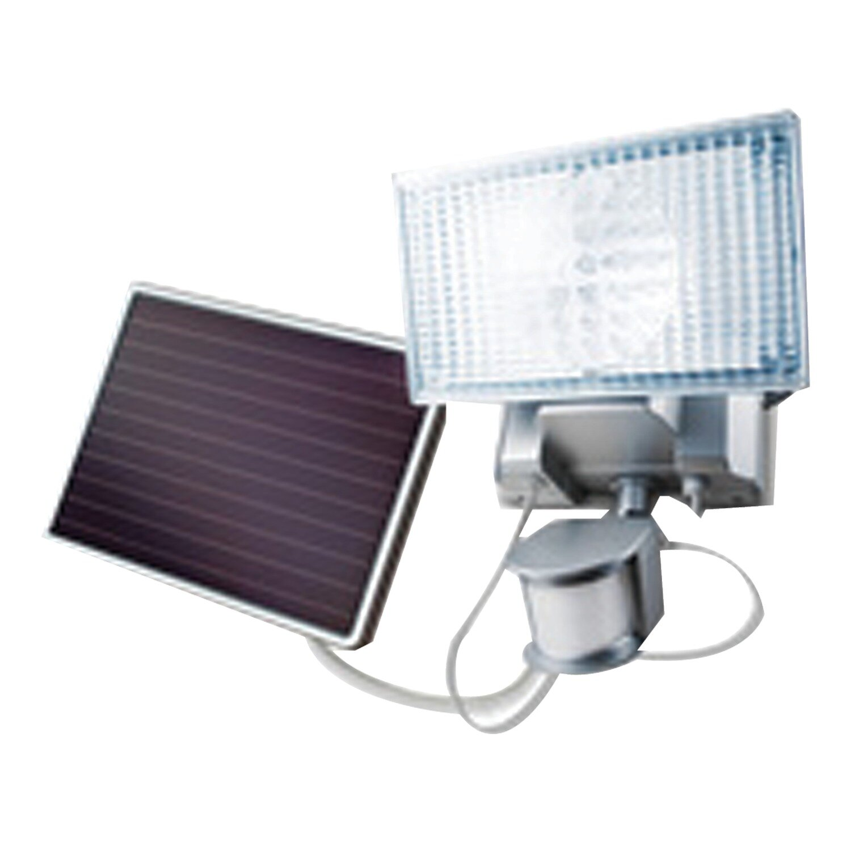 Maxsa Silver Solar Powered Integrated Led Spot Light Reviews Wayfair