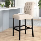 Amiyr Bar & Counter Stool (Set of 2) by Winston Porter