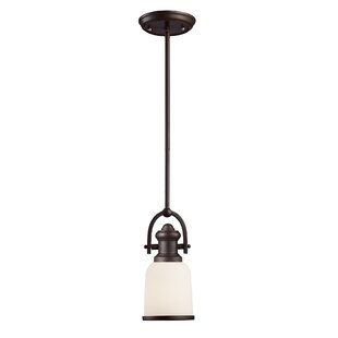 Birch Lane™ Somers 1-Light Cone Pendant