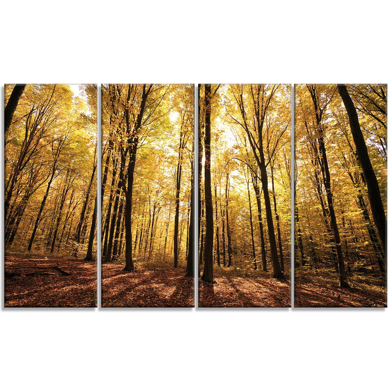 Designart Setting Sun Over Dense Fall Forest 4 Piece Photographic Print On Wrapped Canvas Set Wayfair