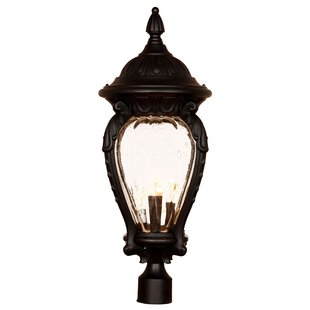 Charlton Home Pursell Outdoor 4-Light Lantern Head