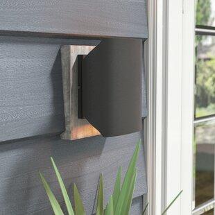 Orren Ellis Leilla LED 2-Light Outdoor Flush mount