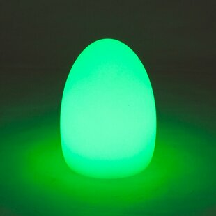 Egg-Shaped 8.2 Table Lamp By SunTime Outdoor Living Lamps