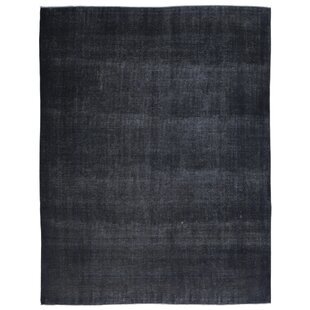 One-of-a-Kind Ogallala Hand-Knotted 10' X 12' Wool Black Area Rug Isabelline
