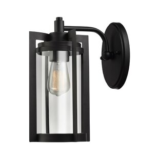 Carlton 1-Light Outdoor Wall Lantern