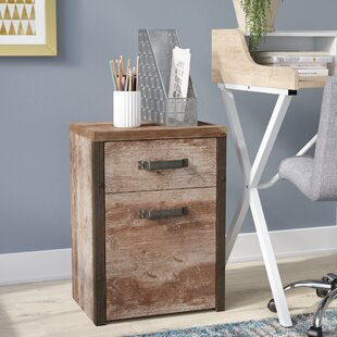 Coraline 2 Drawer Roll Container By Williston Forge
