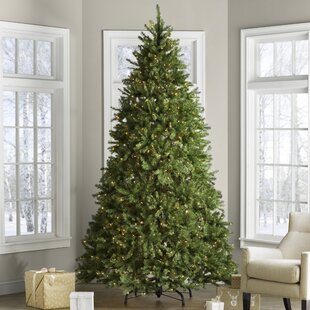 hinged fir trees 9 green fir trees artificial christmas tree with 900 clearwhite lights lights