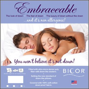 Embraceable Polyfill Standard Pillow (Set of 2)