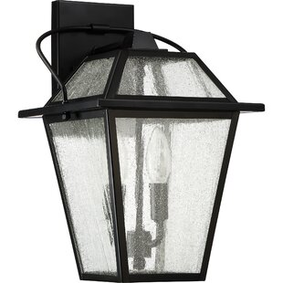 Darby Home Co Beardsley 2-Light Outdoor Wall Lantern