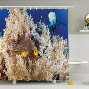 Sea Animal Reef with Clown Fish and Sharks East Egyptian Red Sea Life Scenery Shower Curtain Set
