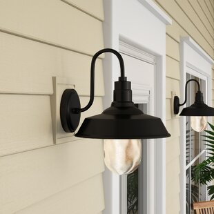 Burney 1-Light LED Outdoor Barn Light